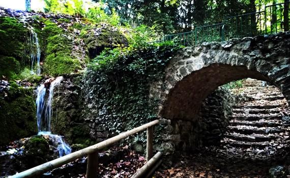Randonnée photo au parc de Saint Pons à Gémenos