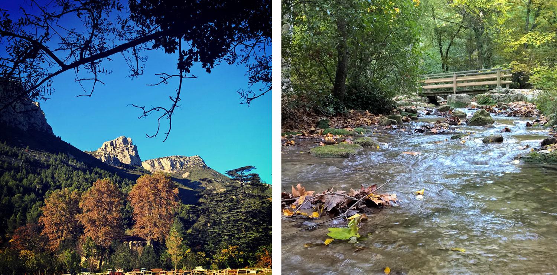 Randonnée photo au domaine de Saint-Pons à Gémenos